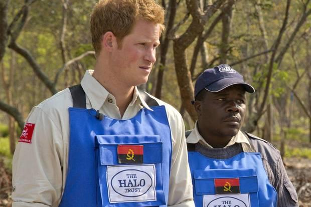 Prinz Harry, Angola