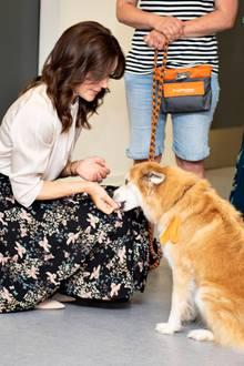 17. Juni 2019  Im Neurozentrum des Krankenhauses Hammel schließt Prinzessin Mary Bekanntschaft mit einem zutraulichen Therapiehund.