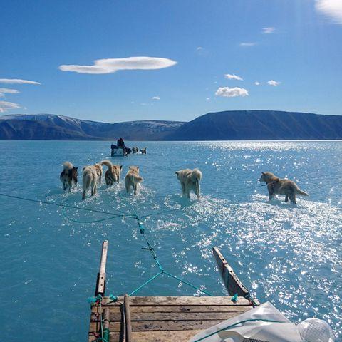 Foto aus Grönland zeigt dramatische Folgen der Klimaerwärmung