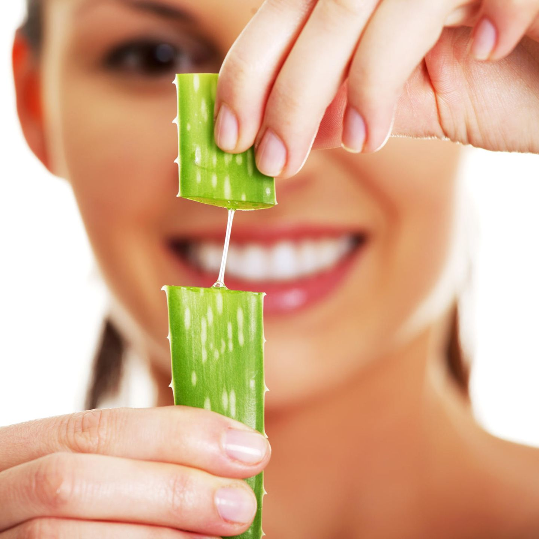 Aloe-vera-Wirkung