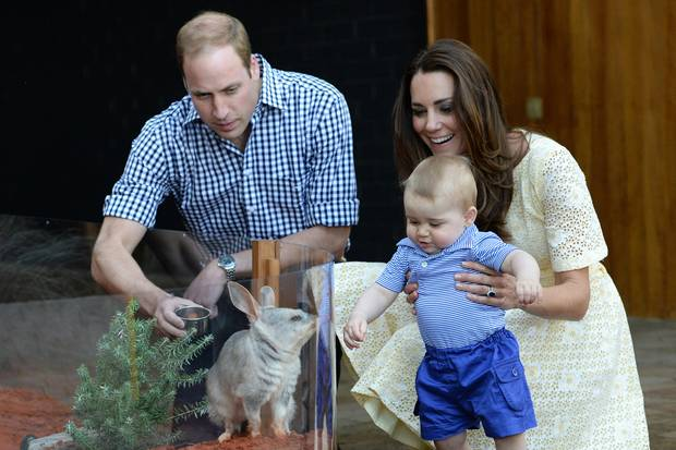 "Prinz William, Prinz George und Herzogin Kate im ""Taronga Zoo"" in Sydney (2014)"