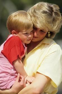 Prinzessin Diana, Prinz Harry