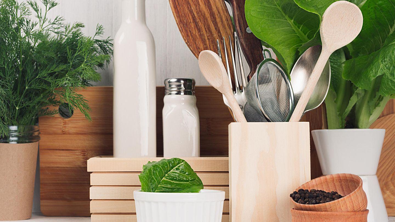 Nachhaltigkeit in der Küche: So ersetzen Sie Plastik  GALA.de