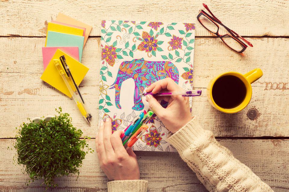 Malbuch für Erwachsene, Frau malt aus, Pflanze, Stifte, bunte Zettel, Brille, Kaffeebecher, Hände, Malbuch, Tisch