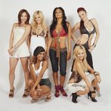 """Als die """"Pussycat Dolls"""" räumenJessica Sutta, Ashley Roberts, Nicole Scherzinger, Carmit Bachar, Melody Thornton und Kimberly Wyatt vor allem mit ihrem Song """"Don'tCha"""" ab. 2005 ist ihr großer Durchbruch. Doch auch in den folgenden vier Jahren feiert die Band viele Erfolge. Anschließend gehen sie jedoch getrennte Wege."""
