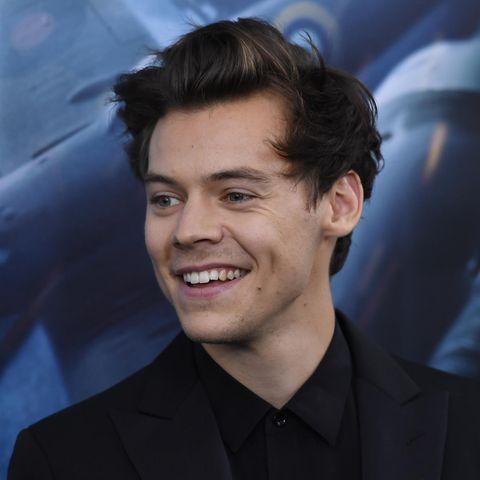 Harry Styleskönnte Prinz Eric spielen