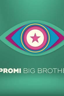 """""""Promi Big Brother"""" startet am 9. August auf Sat.1"""