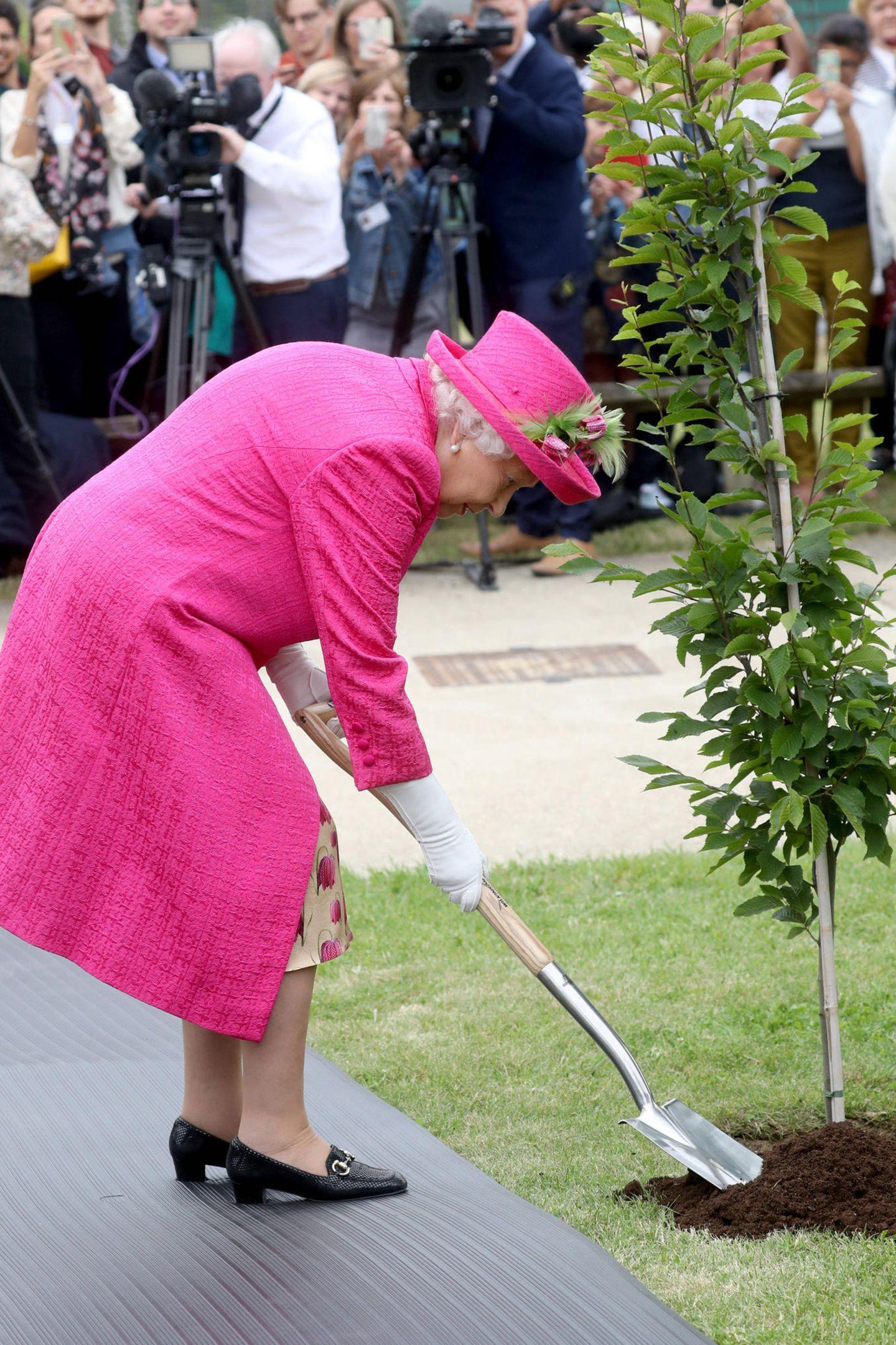 """Bei ihrem Besuch des """"National Institute of Agricultural Botany"""" greift Queen Elizabeth zum Spaten und hilft beim Baumpflanzen."""