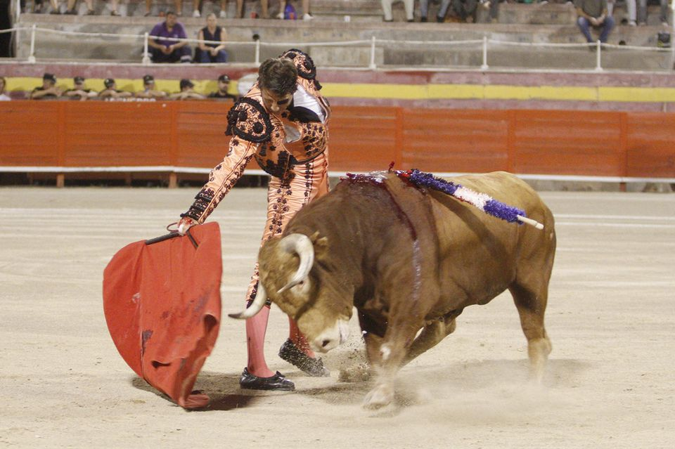 Stierkampf ist weltweit höchst umstritten, gilt in Spanien aber als Tradition