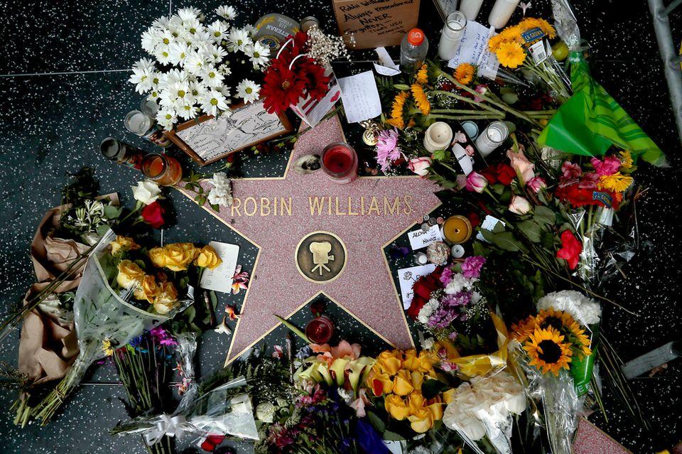 11. August 2019  Fünf Jahre ist es nun schon her, dass Hollywood einen seiner größten Schauspieler verlor. Robin Williams wurde am 11. August in seinem Haus im kalifornischen Paradise Cay tot aufgefunden, als Todesursache wird Suizid angegeben. Der Verlust wird auf der ganzen Welt beklagt, wie auch hier auf dem Walk of Fame in Hollywood.