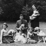 Im Garten von Windsor Castle spielt dieKönigsfamilie mit ihren Hunden.