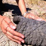 Im Jahr 2017 besuchen Prinz Harry und Herzogin Meghan eine Elefantenfarm in Botsuana und teilen im August 2019 diesen Instagram-Schnappschuss.Darauf zu sehensind die Hände und Handgelenke der Herzogin, die mit Ringen und Armbändern verziert sind. Eine besondere Bedeutung hat Meghans Elefantenhaar-Armband an ihrem linken Handgelenk: Der afrikanische Schmuck – früher aus Elefantenhaar, mittlerweile aus Metall oder Perlen gefertigt – soll seinem Träger Glück bringen und ihn mit Liebe, Gesundheit und Wohlstand segnen. Links getragen, soll das Armband außerdem das Geschenk einer besonderen Person sein – möglicherweise ein Präsent von Harry? Auchein Blick auf Meghans Ringe lohnt sich ...