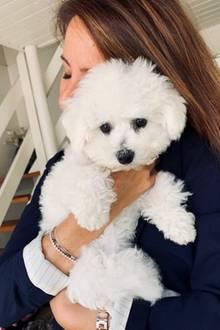 21. August 2019  Auch Prinzessin Marie schließt Hundedame Cerise herzlich in die Arme.