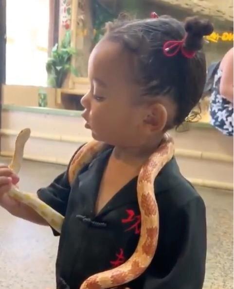 User entsetzt: Tochter Chicago spielt mit Schlange um den Hals