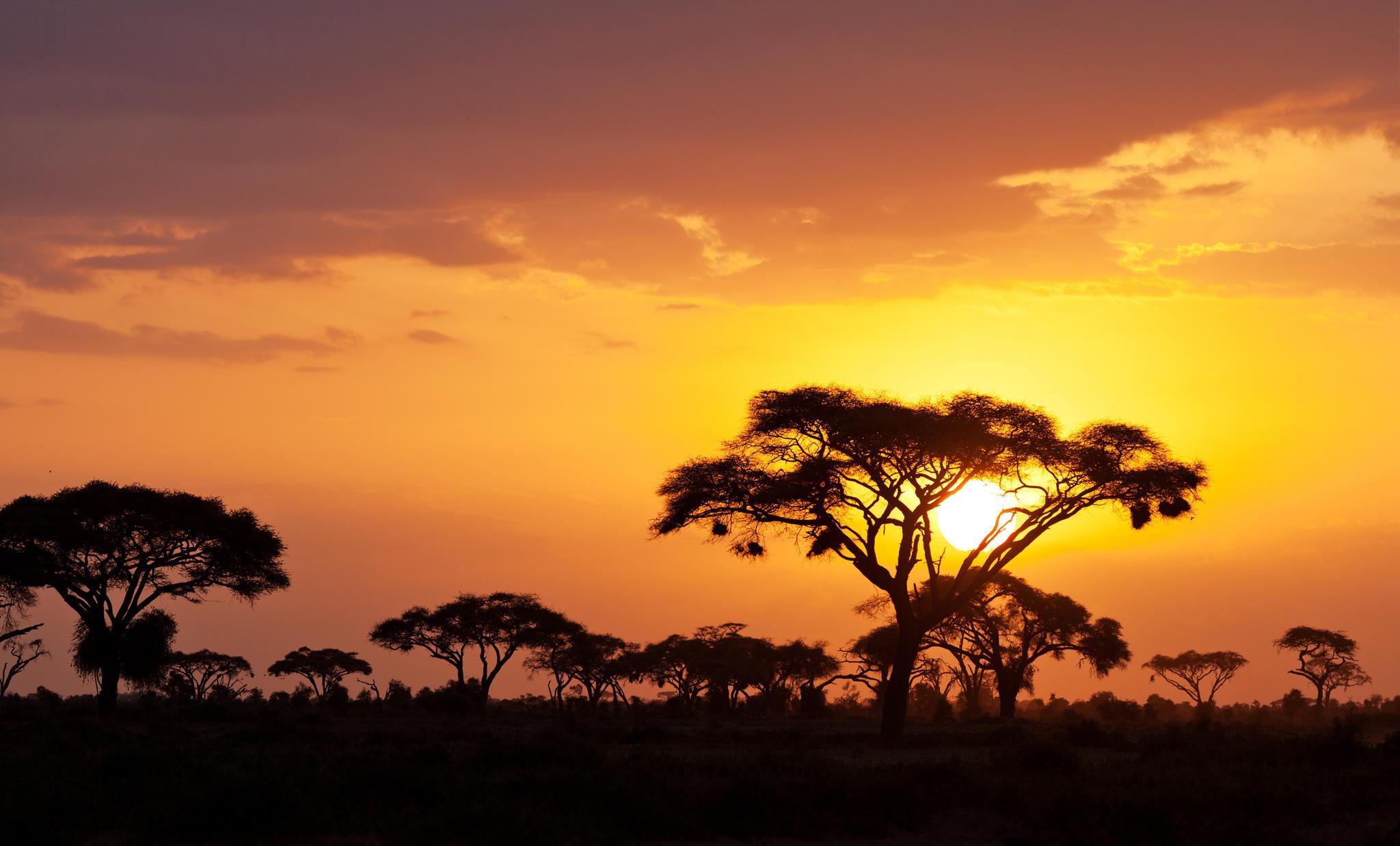 Sonnenuntergang in Kenia, Afrika