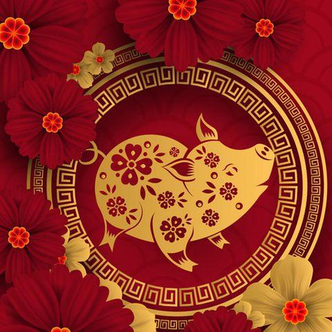 2019 ist in der chinesischen Astrologie das Jahr Schweines. DasSchweinsteht an der 12. Stelle derchinesischen Sternzeichen