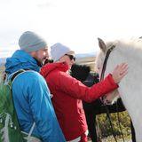 Zärtlich streichelt die norwegische Kronprinzessin ein Pferd.