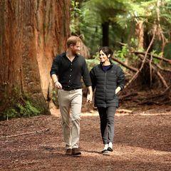Prinz Harry und Herzogin Meghan heiraten am 19. Mai 2018. Im Herbst desselben Jahres unternehmen sie ihre erste Übersee-Reise als Ehepaar. In einer 16-tägigen Tour geht es nach Australien, Fidschi, Tonga und Neuseeland, wosie unter beeindruckenden Mammutbäumen, den riesigen Redwoods, spazieren. Die beiden Turteltauben haben allen Grund zur Freude: Zu Beginn der Reise gibt das Herzogspaar von Sussex bekannt, dass es sein erstes Kind erwartet.