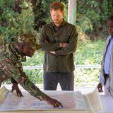 """Prinz Harry + Herzogin Meghan: Während des Besuchs im Chobe Waldreservat trifft sich Prinz Harry mit der """"Botswana Defence Force"""", die gegen Wilderei vorgeht."""