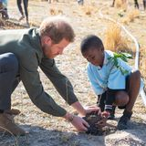 Prinz Harry + Herzogin Meghan: Bei dem sozialen Projekt im Waldreservat mit einheimischen Schulkindern packt Harry mit Freude an.