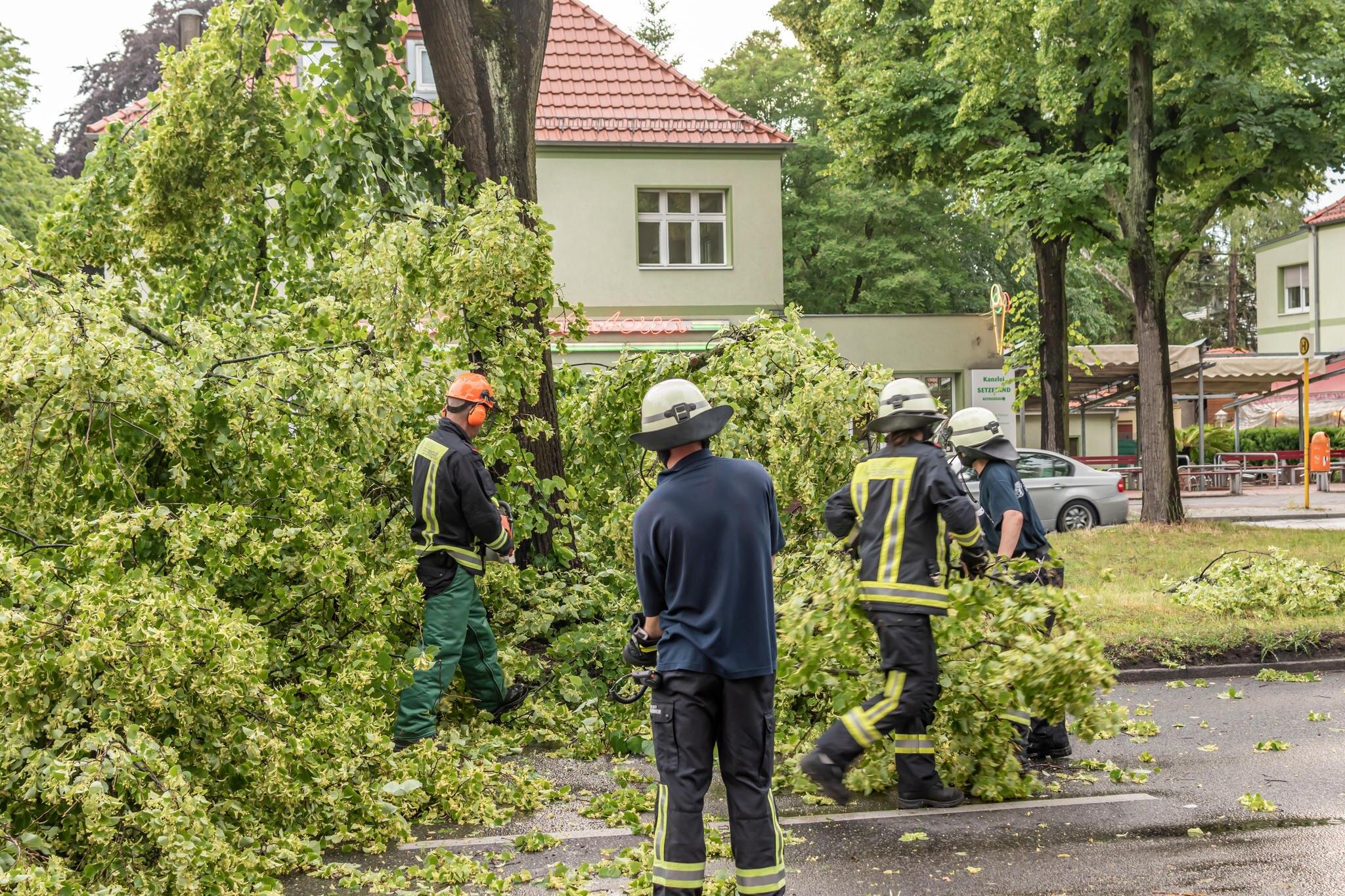 """Sturmtief """"Mortimer"""": Zugausfälle und Unwetter sorgen für durchwachsenen Start in die Woche"""