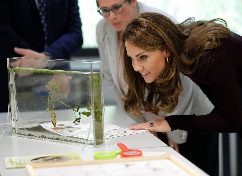 """9. Oktober 2019  Auch Herzogin Kate hateinen Termin im Naturkunde Museum in London, wo siedas """"Angela Marmont Centre for UK Biodiversity"""" besucht."""