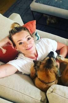Hillary Duff hat ihre Liebstenaus dem Tierheim gerettet und bietet ihnen ein glückliches Zuhause.