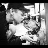 So sieht wahre Liebe aus:Schauspieler und Musiker Jeremy Renner ist ein echter Hunde-Narr.