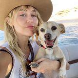 Als Hund vonMiley Cyrus erlebt man die besten Abenteuer. Die Sängerin nimmt ihren Hund Bean überall mit hin.
