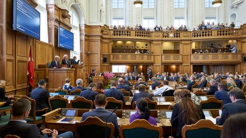Ein Kamel + vier Elefanten: Das dänische Parlament bricht in Gelächter aus