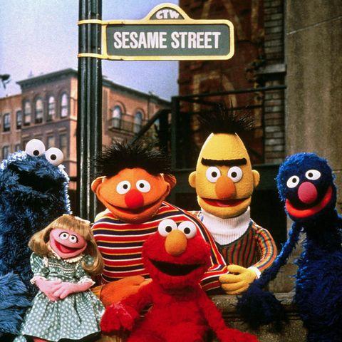 """""""Sesamstraße"""""""