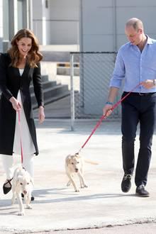 Am letzten Tag ihrer Reise entstehen Fotos, die Herzen höher schlagen lassen! Herzogin Catherine und Prinz William besuchen eine Hunde-Trainings-Center und nutzen die Gelegenheit für einen Spaziergang mit den fröhlichen Welpen. Kate trägt jetzt eine schwarze Kurta und schwarze Riemchen-Ballerinas.