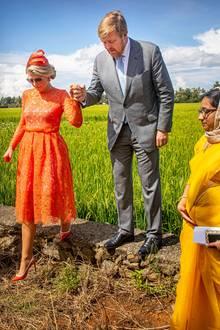 18. Oktober 2019  Galant geleitet Willem-Alexander seine Frau im strahlenden Dress durch ein Reisfeld in den Backwaters bei Alappuzha.
