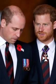 Prinz William, Prinz Harry