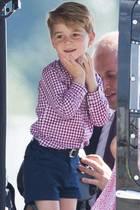 Prinz George und Prinz William