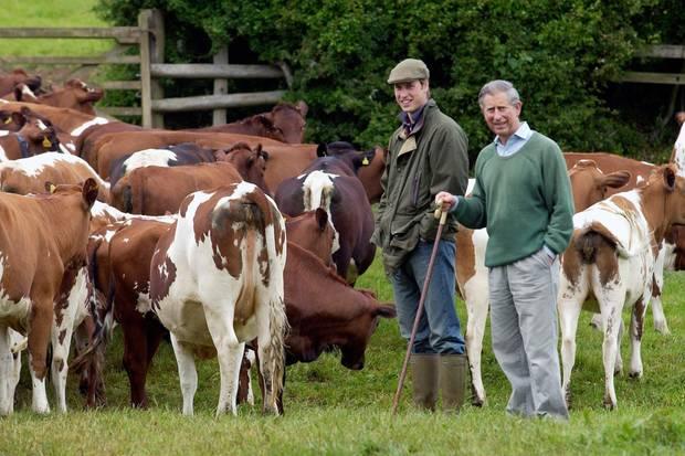 Prinz William und Prinz Charles 2004 auf einem Bio-Bauernhof im Herzogtum Cornwall.