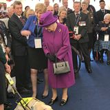 Auch Hunde sind in der Einrichtung gern gesehen. Für Hundefan Elizabeth eine Begegnung, die sie prompt zum Lachen bringt.