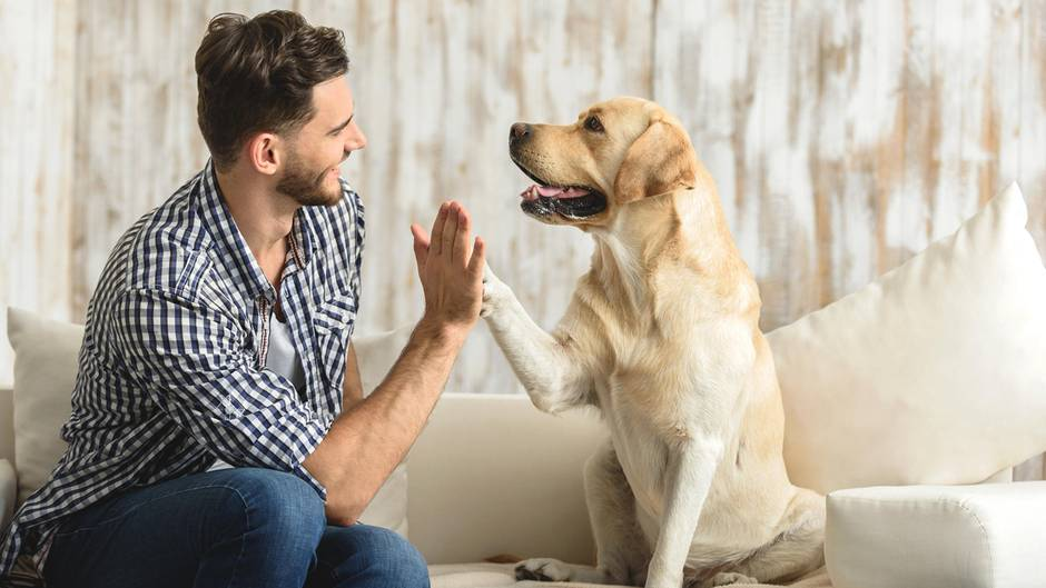 Herrchen mit Hund