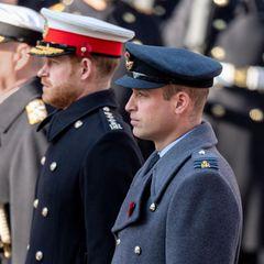 Prinz Andrew, Prinz Harry undPrinz Wiliam am Remembrance Sunday 2019
