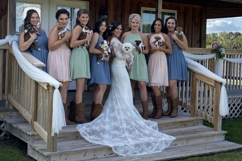 Statt Brautstrauß lieber süße Welpen? Für Braut Andee trifft diese Entscheidung aus einem besonderen Grund.