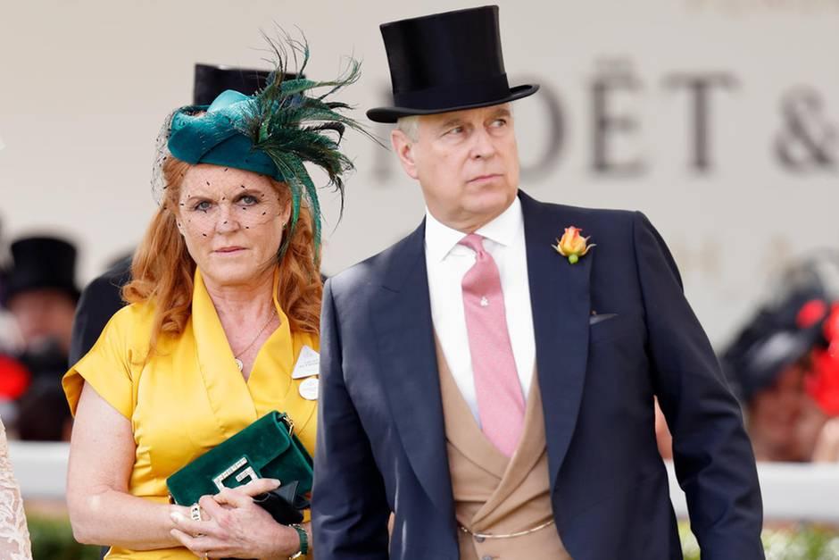 Prinz Andrew tritt zurück - offenbar wegen Epstein-Skandal | Panorama