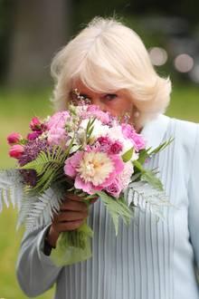 """Herzogin Camilla: Den Rest des Tages gehen Camilla und Charles getrennte Wege. Für die Herzogin geht es zunächst zum Botanischen Garten in Christchurch, anschließend stattet sie dem dortigen """"Battersea Women's Trust"""" einen Besuch ab."""