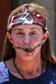 """23. November 2019  Nicht nur unsere deutschen Promis müssen im Dschungel unappetitliche Prüfungen über sich ergehen lassen. Caitlyn Jenner, die gerade in der britischen Ausgabe """"I'm a Celebrity... Get Me Out of Here!"""" für den TV-Sender ITV um die Dschungelkrone kämpft, lutscht hier an einem kleinen Krustentier. Ob dem Winzling das so gefällt, ist eher fraglich."""