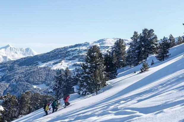 DieRegion Hall-Wattens in Tirol lädt zum Schneeschuhwandern ein.