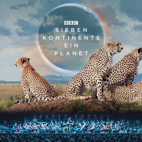 """Die Natur-Dokumentation """"Sieben Kontinente, ein Planet"""" tourt im Mai 2020 durch Deutschland."""