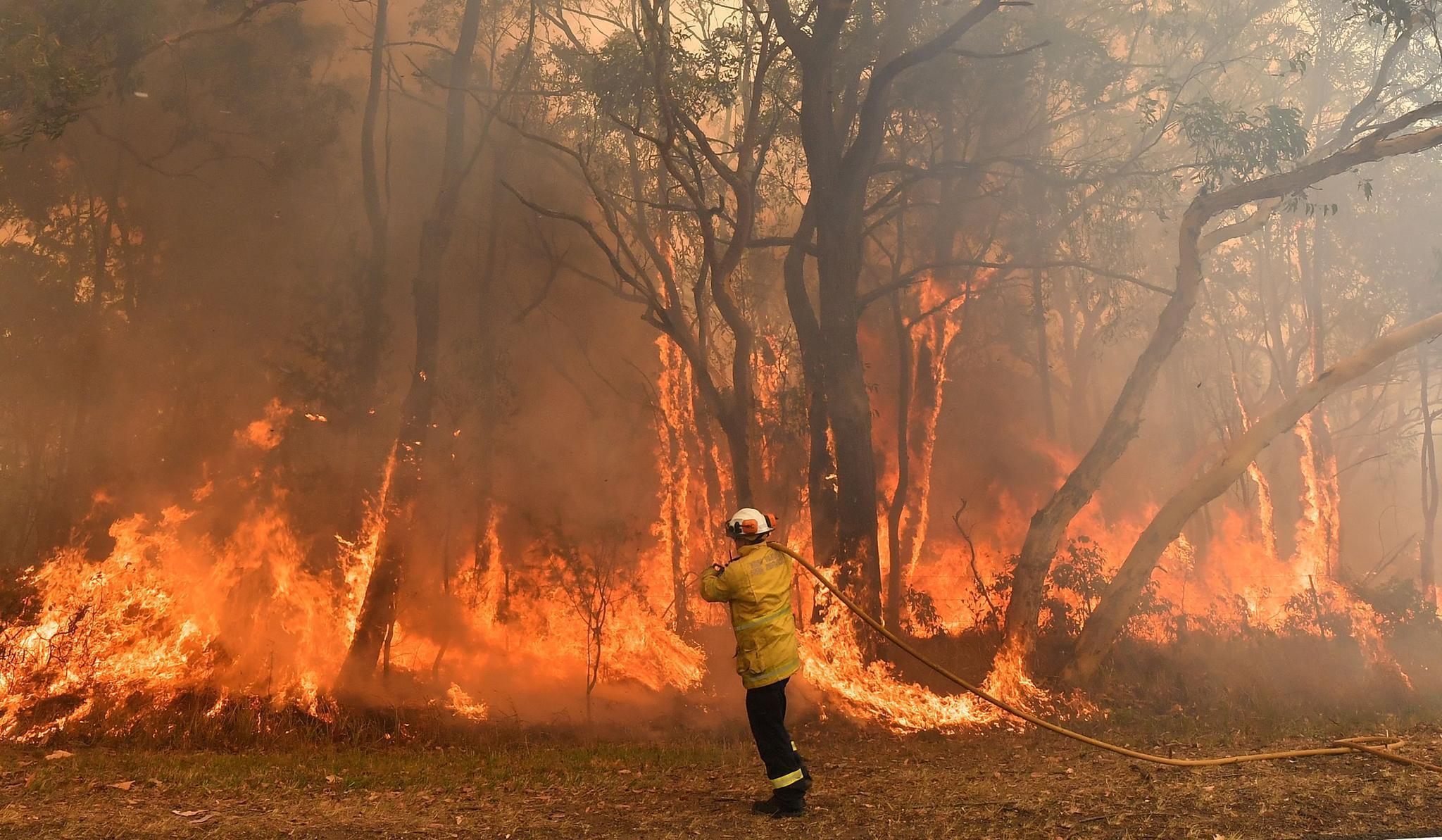 Feuerwehrmann bekämpft Buschfeuer in Australien