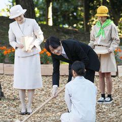 16. Dezember 2019  Zum 43. Nationalen Baumpflegefestival in Okinawa packt auch der japanische Kronprinz Akishino an der Seite seiner Gattin Prinzessin Kikofleißig mit an.