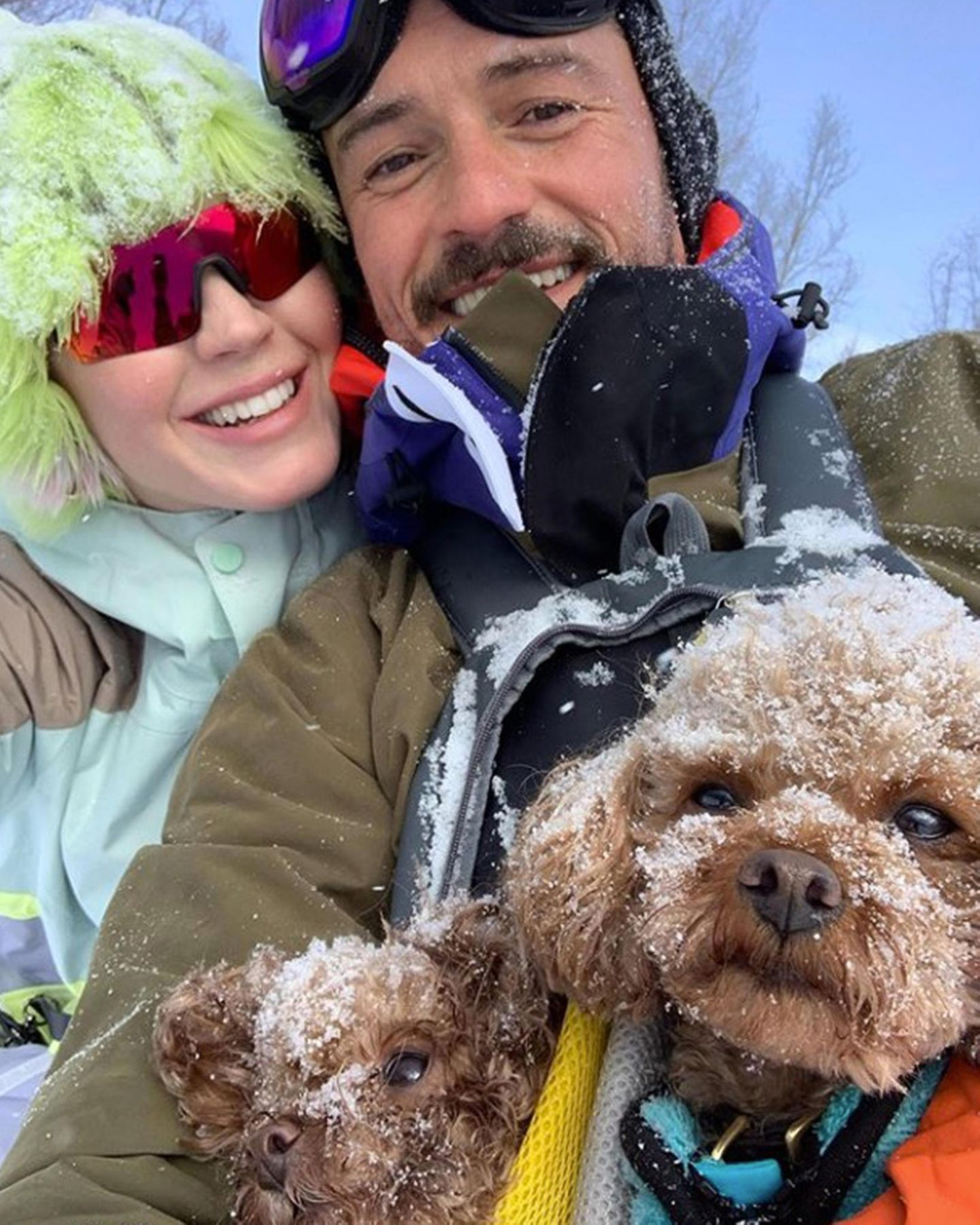 Nicht nur Katy Perry und Orlando Bloom haben ihren Spaß im Schnee, sogar den beidenMinipudeln Nugget und Mighty gefällt es.
