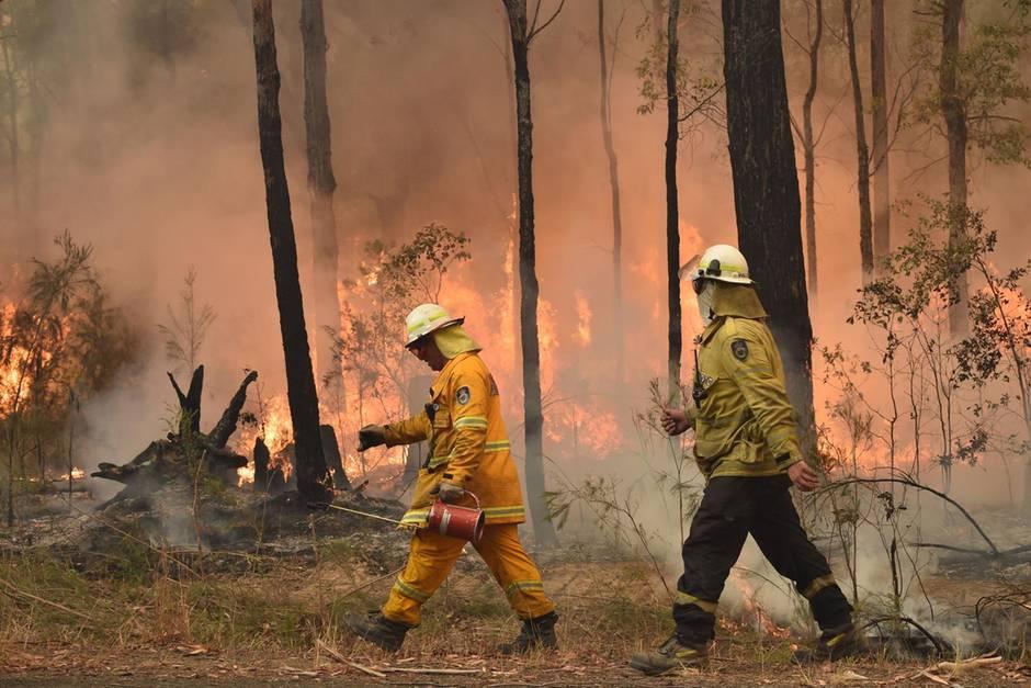 Feuerwehrmänner kämpfen in Australien gegen die Buschbrände