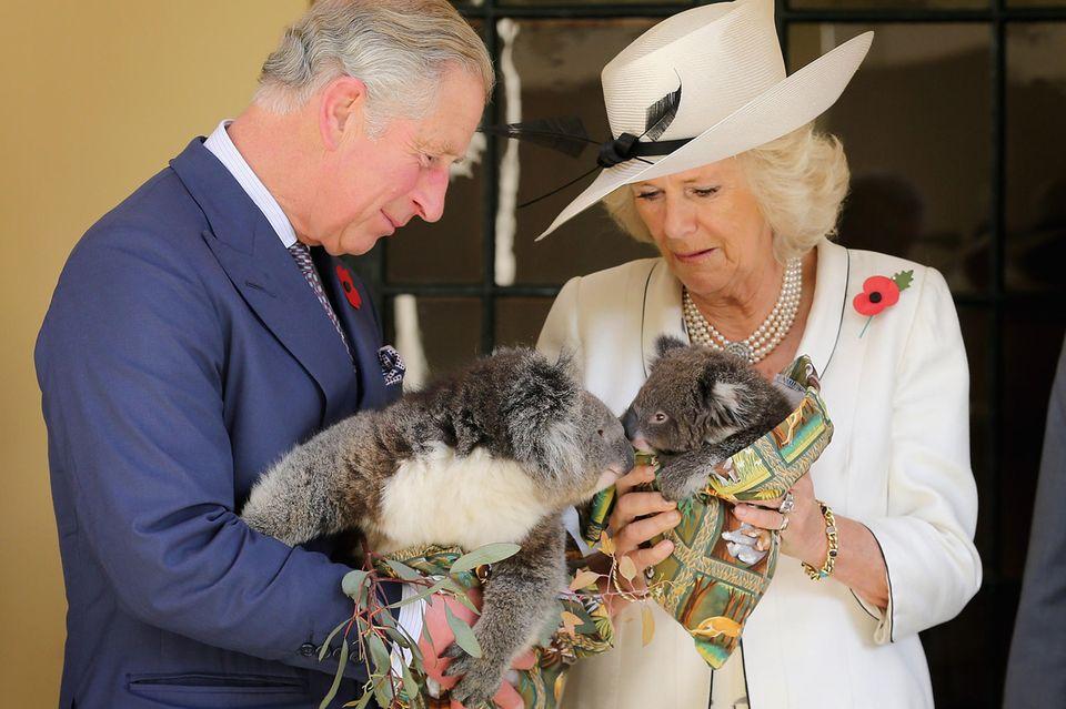 Prinz Charles und Herzogin Camilla am 7. November 2012 während einer Tour durch Australien.